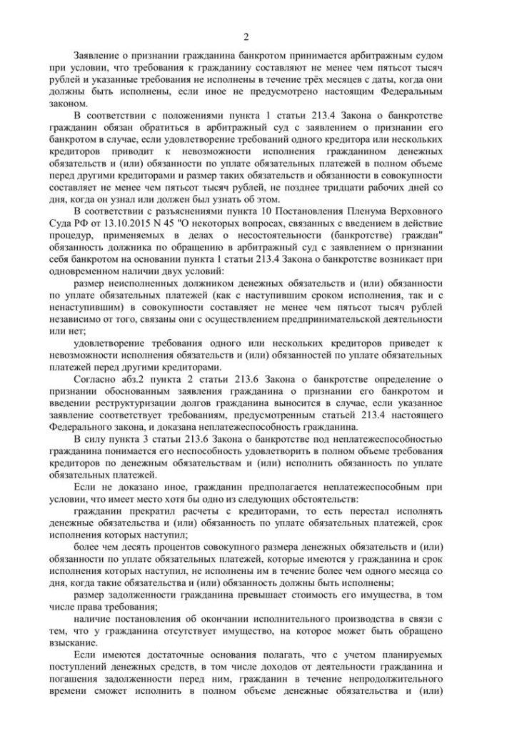 Панферова Банкротство-2